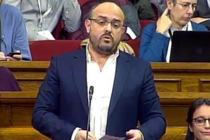 El épico derechazo de Alejandro Fernández al 'jeta' Torra que lo ha dejado fuera de combate