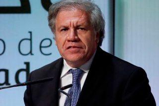 El secretario general de la OEA, Luis Almagro: