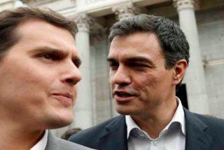"""La frase redonda con la que Rivera paraliza a Sánchez: """"Tiene coraje para exhumar a Franco pero no para destituir a Torra"""""""