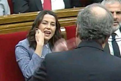 """Arrimadas y la bancada de Ciudadanos estallan ante el descarado veto de Torrent en auxilio del golpeado Torra: """"¡Qué poca vergüenza!"""""""