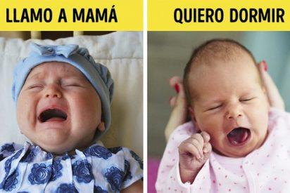 Las 17 señales que usa un bebé para comunicarse cuando todavía no sabe hablar