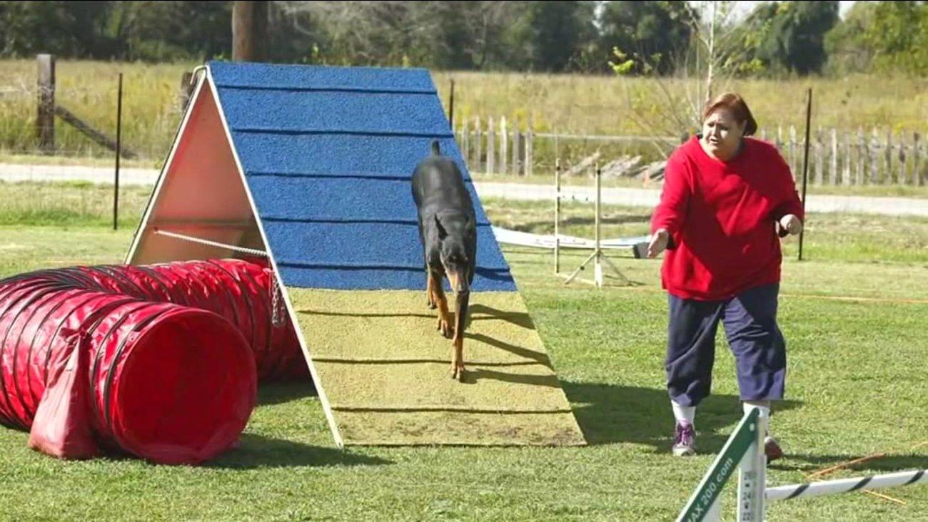 Entrenadora de perros en EEUU, muerta con el rostro desfigurado por mordeduras
