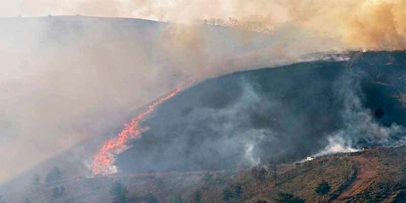 Cantabria: Detienen a un tipo tras pillarlo 'in fraganti' con un mechero prendiendo fuego al monte