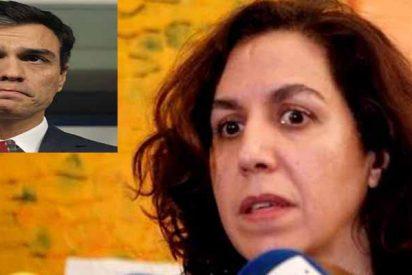 """Pedro Sánchez, alias 'Doctor Plagio', confiesa que fue Irene Lozano quien dio """"forma literaria"""" a su libro"""