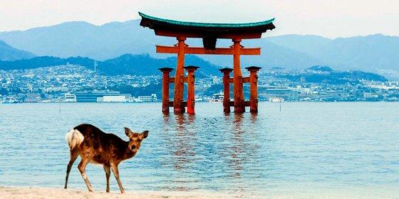 """Descárgate grátis la guía """"100 Experiencias en Japón"""""""