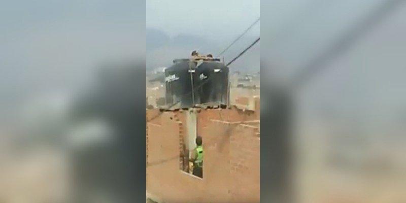 Vídeo: Golpea a sus hijas y las encierra desnudas en un tanque de agua