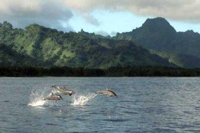 Islas paradisíacas: Estados Federados de Micronesia