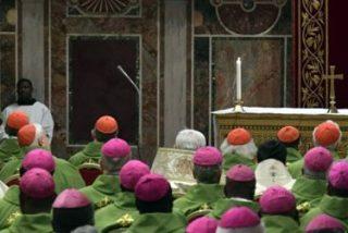 Francisco asume, al fin, los criterios de la OMS para acabar con la pederastia en la Iglesia