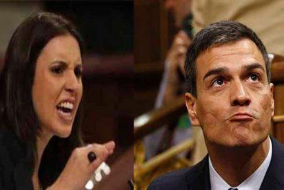 """Podemos se asusta ante la fuga de votos hacia el PSOE y decide atacar a Sánchez: """"No es de fiar"""""""