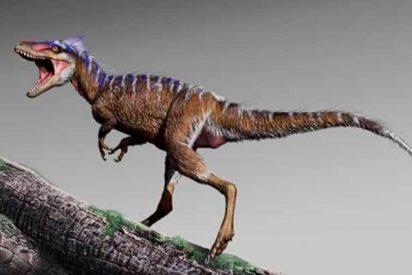 'Moros intrepidus', el diminuto tiranosaurio que fue el 'abuelo' del 'Tiranosaurio Rex'