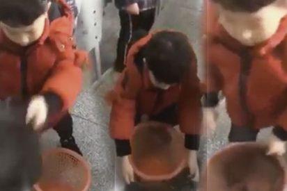 ¿Todavía no has visto el vídeo viral del truco de este niño para colocar bien la bolsa de la basura?