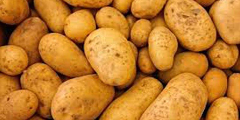 ¿Sabes cómo debes cocinar las patatas para engordar menos?