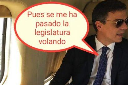 Ridiculizan a Pedro Sánchez con 'memes' tras la convocatoria de elecciones generales