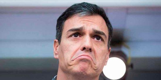 El repugnante gesto de Sánchez al Rey para que no le pongan mala cara sus socios separatistas