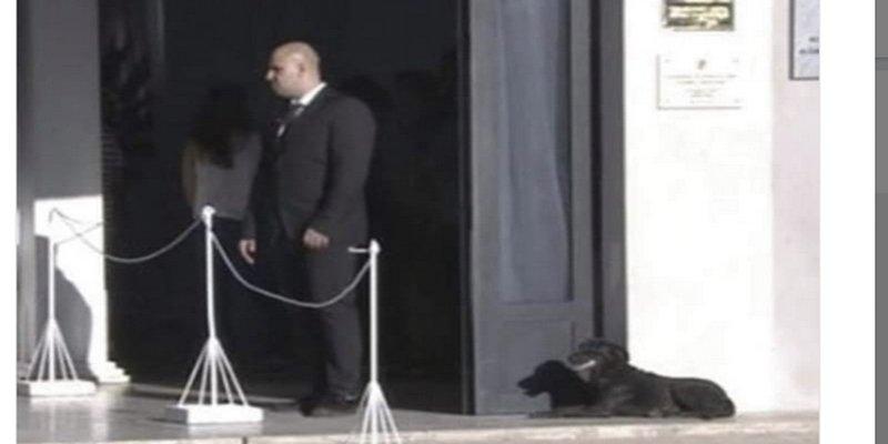 La perra de Emiliano Sala acudió a su funeral para darle el último adiós