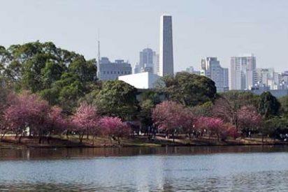Qué ver en Sao Paulo