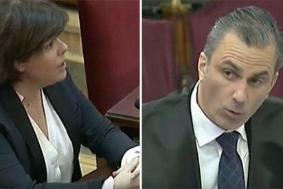 Ortega Smith (VOX) pone en jaque a Soraya Sáenz en el juicio del procés por no haber aplicado el 155 antes