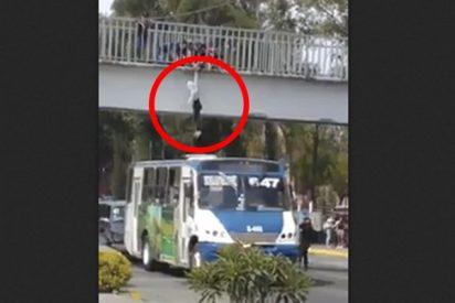 Así fue el momento exacto en el que un chofer le salva la vida a una mujer que pretendía suicidarse