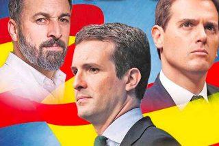 VOX es el único partido que sube y afianza en España la mayoría absoluta del centro derecha