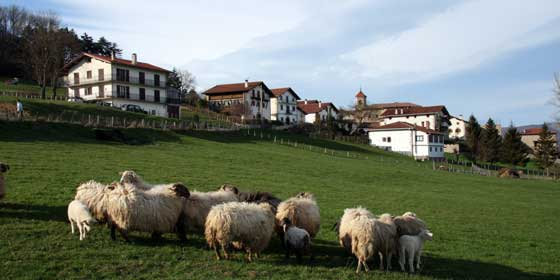 Qué ver y hacer en Navarra esta primavera
