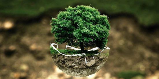 5 trucos para hacer una limpieza de ecológica