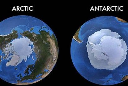 ¿Sabes cuáles son las 5 grandes diferencias entre el Ártico y el Antártico?