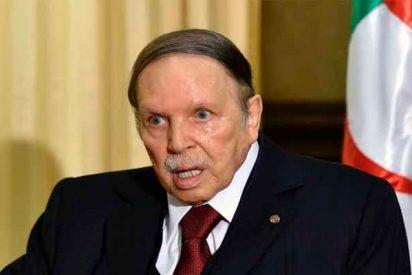 Argelia: Bouteflika cede a la presión ciudadana y renuncia a un nuevo mandato tras 20 años en el poder