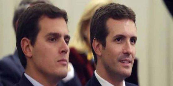 """Rivera ofrece a Casado una coalición para echar a Sánchez y el PP responde: """"Es tarde"""""""