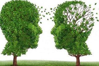 Los pacientes con Alzheimer sufren ya atrofias en el cerebro a los 40 años