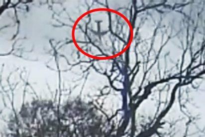 Publican estas imágenes de la caída boca abajo del avión de carga Boeing 767 en Texas