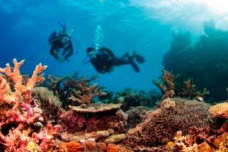 Centroamérica: La Gran Barrera de Coral de Belice