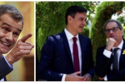 Toni Cantó se harta del ataque del PSOE contra Ciudadanos y le arrincona con una vergonzosa foto para Sánchez