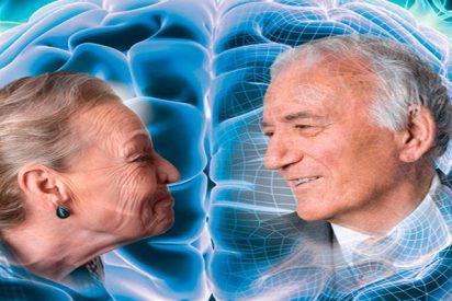 ¡El cerebro sufre un envejecimiento prematuro por culpa de estos factores!