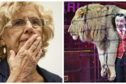 El circo denunciará a Carmena por la payasada de prohibir el uso de animales en sus espectáculos