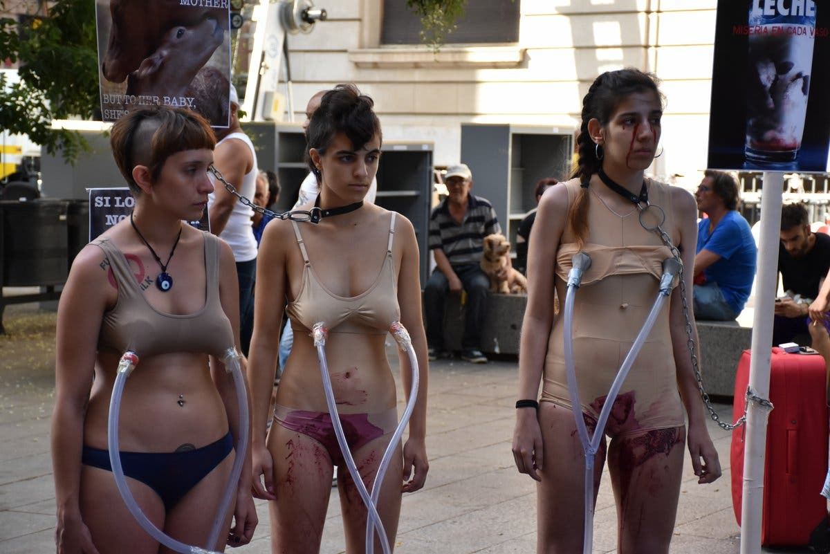 Año electoral en España - Página 7 Contra-leche