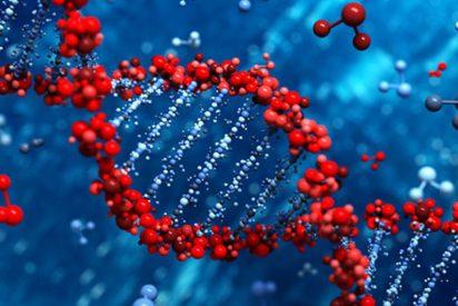 'CRISPR-Chip': Un nuevo dispositivo que detecta mutaciones genéticas en minutos