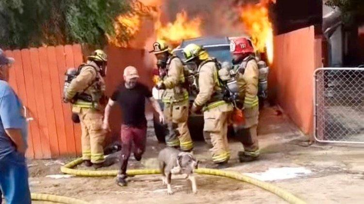 VIDEO: Ignora a los bomberos, entra a su casa en llamas y rescata a su perro