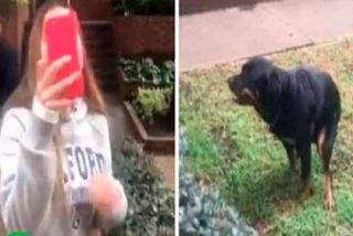 #LadyPopó, así bautizan a esta guarrindonga 'ecologista' por no recoger las porquerías de su perro