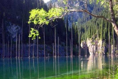 Destinos más raros del mundo: Lago Kaindy, Kazajistán