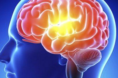 Explican por qué el cerebro olvida hacer algo ya planeado