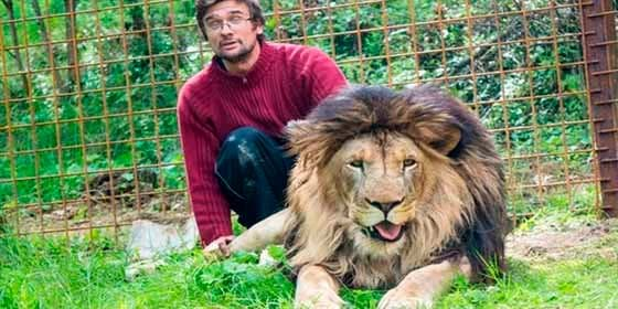 El animalista que crió a dos leones como 'hijos' y ellos no repararon en devorar a su 'padre'