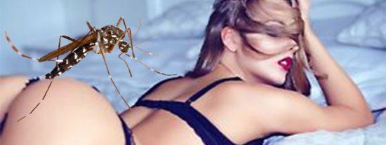 ¿Sabes por qué los mosquitos pican más a unas personas que a otras?