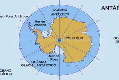 Acidificación: Sombrío futuro para los microorganismos en el Océano Austral