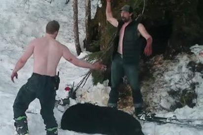 El asqueroso vídeo donde un padre y su hijo se jactan tras masacrar a una indefensa osa y sus oseznos