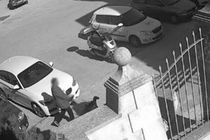 Graban a este sinvergüenza que abandona a su perra y huye a toda velocidad con su coche
