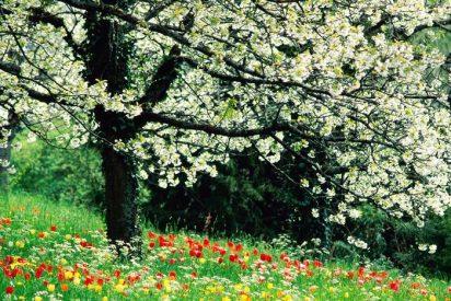 Esta primavera los ACCESORIOS serán los protagonistas