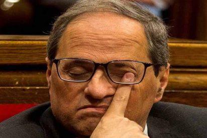 El xenófobo Torra se ríe de la Junta Electoral Central y de los jueces españoles