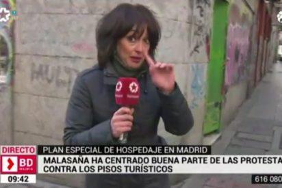 ¡Esperpéntico directo en Telemadrid! Buscan testimonios para rajar contra los pisos turísticos y pasa esto