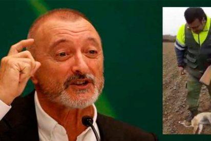 Perdigonazo de Pérez-Reverte a los jueces por arrodillarse ante los animalistas y prohibir la caza en Castilla y León