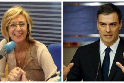 """El magistral esbozo que Rosa Díez hace de Pedro Sánchez y sus 'explosivos' socios: """"No le hace ascos a nada"""""""
